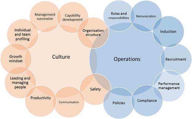 People Management & Succession